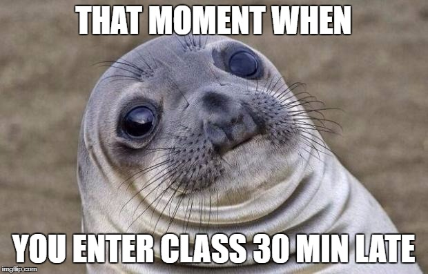 Awkward Moment Sealion Meme | THAT MOMENT WHEN YOU ENTER CLASS 30 MIN LATE | image tagged in memes,awkward moment sealion | made w/ Imgflip meme maker