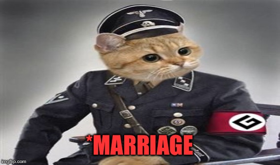 *MARRIAGE | made w/ Imgflip meme maker