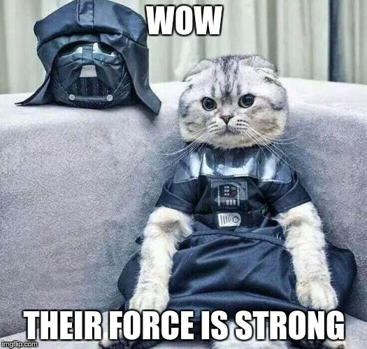 Darth Cat | WOW THEIR FORCE IS STRONG | image tagged in darth cat | made w/ Imgflip meme maker
