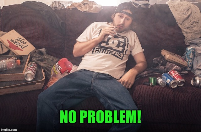 Stoner on couch | NO PROBLEM! | image tagged in stoner on couch | made w/ Imgflip meme maker