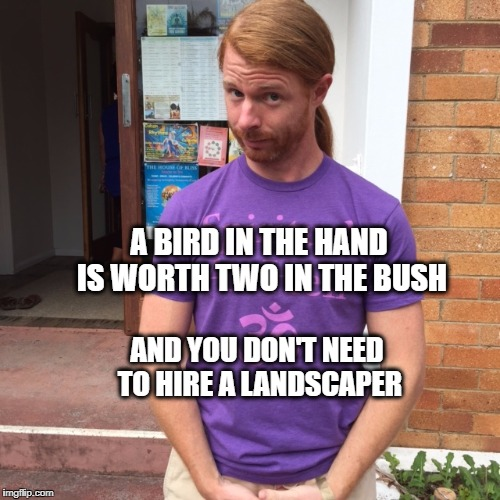 JP Sears. The Spiritual Guy | A BIRD IN THE HAND IS WORTH TWO IN THE BUSH AND YOU DON'T NEED TO HIRE A LANDSCAPER | image tagged in jp sears the spiritual guy,random,birds,landscapes | made w/ Imgflip meme maker