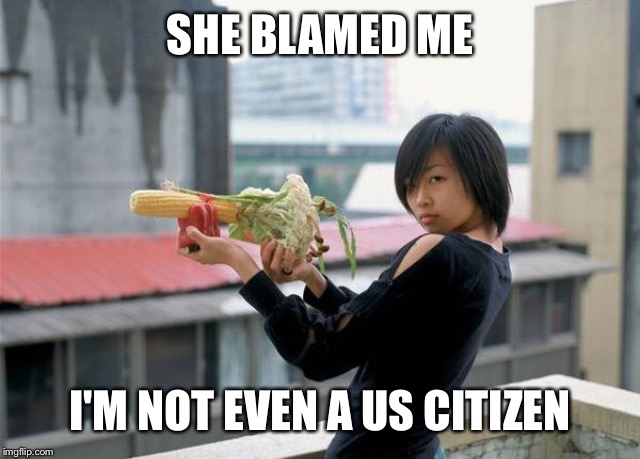 SHE BLAMED ME I'M NOT EVEN A US CITIZEN | made w/ Imgflip meme maker