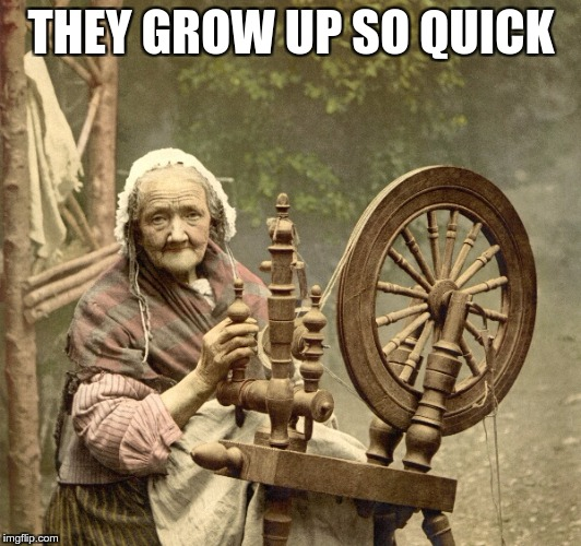 spinning | THEY GROW UP SO QUICK | image tagged in spinning | made w/ Imgflip meme maker