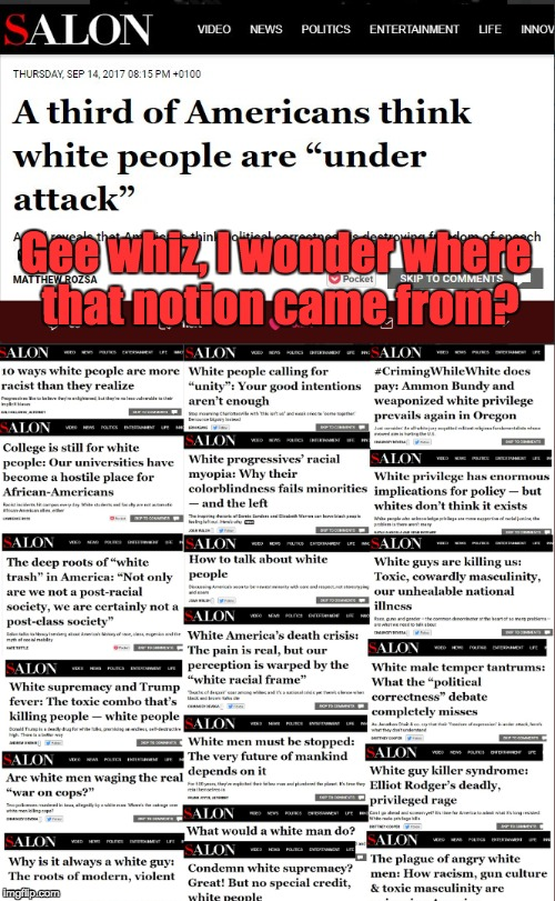 Salon Wonders Why White People Think They Are Under Attack | Gee whiz, I wonder where that notion came from? | image tagged in racism,white privilege,white supremacy,racist | made w/ Imgflip meme maker