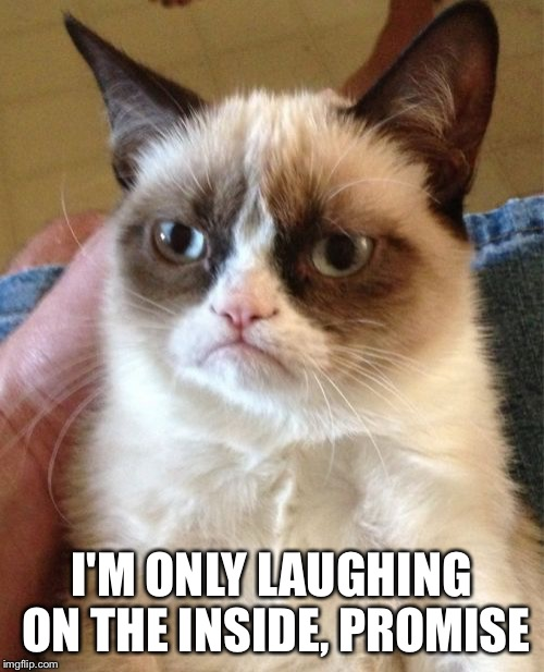 Grumpy Cat Meme | I'M ONLY LAUGHING ON THE INSIDE, PROMISE | image tagged in memes,grumpy cat | made w/ Imgflip meme maker
