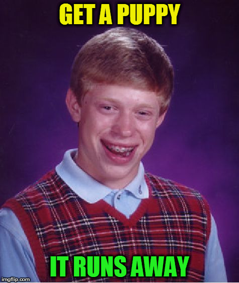 Bad Luck Brian Meme | GET A PUPPY IT RUNS AWAY | image tagged in memes,bad luck brian | made w/ Imgflip meme maker