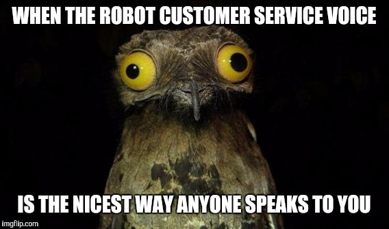 The face you make | WHEN THE ROBOT CUSTOMER SERVICE VOICE IS THE NICEST WAY ANYONE SPEAKS TO YOU | image tagged in weird stuff i do potoo | made w/ Imgflip meme maker