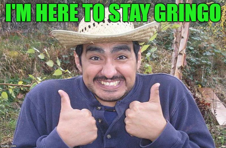I'M HERE TO STAY GRINGO | made w/ Imgflip meme maker