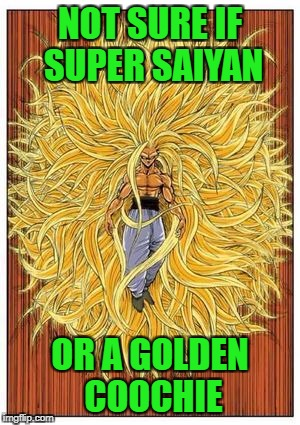 NOT SURE IF SUPER SAIYAN OR A GOLDEN COOCHIE | made w/ Imgflip meme maker
