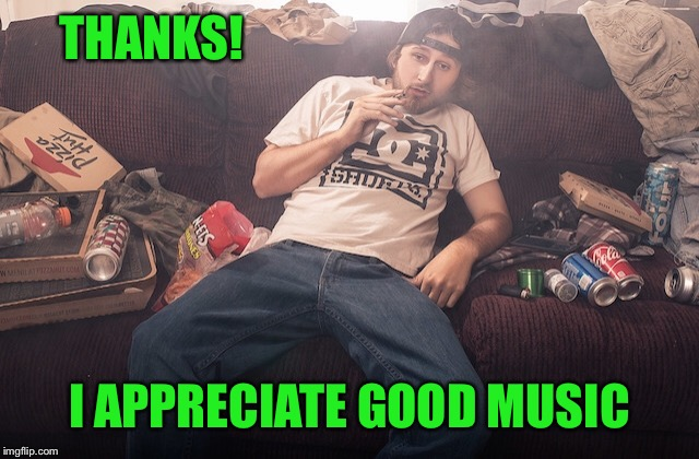 Stoner on couch | THANKS! I APPRECIATE GOOD MUSIC | image tagged in stoner on couch | made w/ Imgflip meme maker