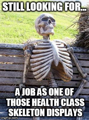 Waiting Skeleton Meme | STILL LOOKING FOR... A JOB AS ONE OF THOSE HEALTH CLASS SKELETON DISPLAYS | image tagged in memes,waiting skeleton | made w/ Imgflip meme maker