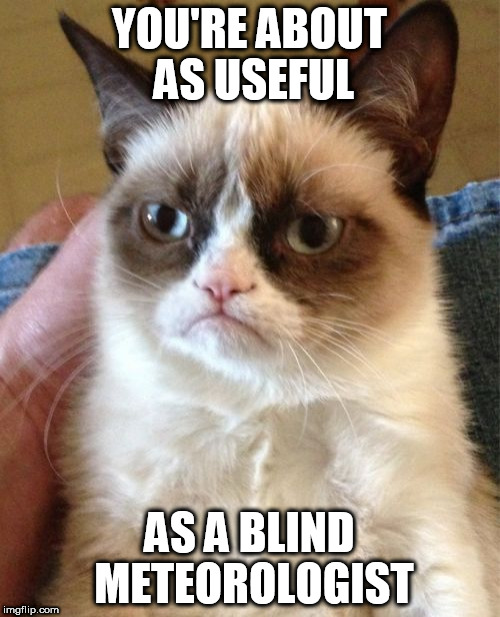 Grumpy Cat Meme | YOU'RE ABOUT AS USEFUL AS A BLIND METEOROLOGIST | image tagged in memes,grumpy cat | made w/ Imgflip meme maker