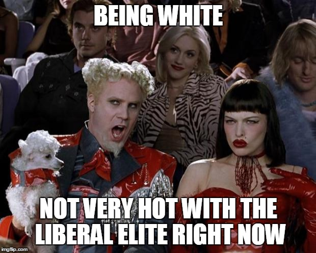 Mugatu So Hot Right Now Meme | BEING WHITE NOT VERY HOT WITH THE LIBERAL ELITE RIGHT NOW | image tagged in memes,mugatu so hot right now | made w/ Imgflip meme maker