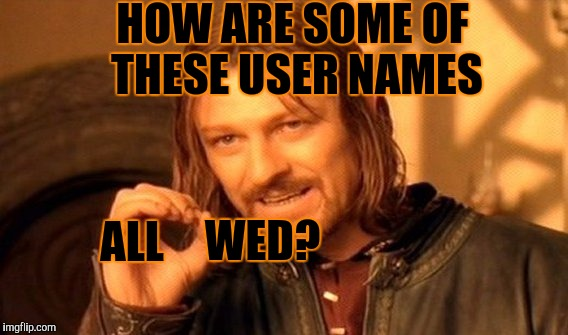 YA GOTTA WONDER SOMETIMES | HOW ARE SOME OF THESE USER NAMES ALL WED? | image tagged in memes,one does not simply,imgflip | made w/ Imgflip meme maker