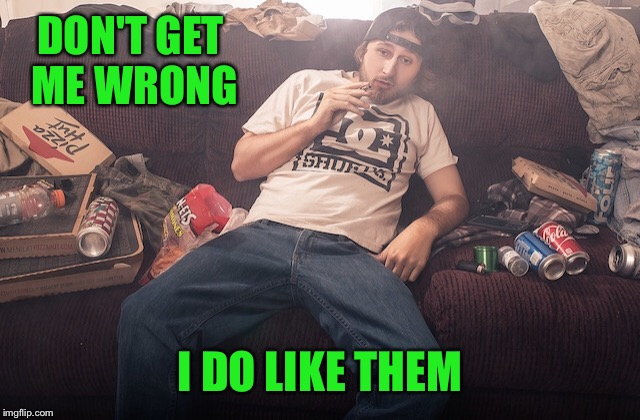 Stoner on couch | DON'T GET ME WRONG I DO LIKE THEM | image tagged in stoner on couch | made w/ Imgflip meme maker