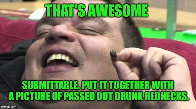 Laughing stoner | THAT'S AWESOME SUBMITTABLE. PUT IT TOGETHER WITH A PICTURE OF PASSED OUT DRUNK REDNECKS. | image tagged in laughing stoner | made w/ Imgflip meme maker