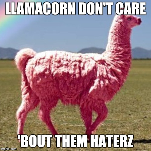 LLAMACORN DON'T CARE 'BOUT THEM HATERZ | image tagged in them haterz | made w/ Imgflip meme maker