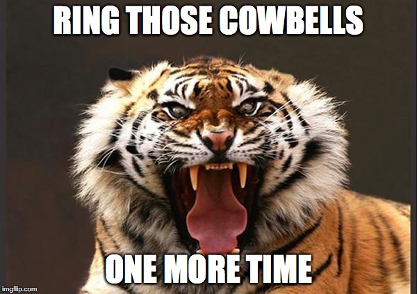Tiger roaring | RING THOSE COWBELLS ONE MORE TIME | image tagged in tiger roaring | made w/ Imgflip meme maker