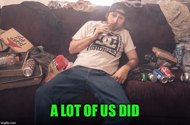 Stoner on couch | A LOT OF US DID | image tagged in stoner on couch | made w/ Imgflip meme maker