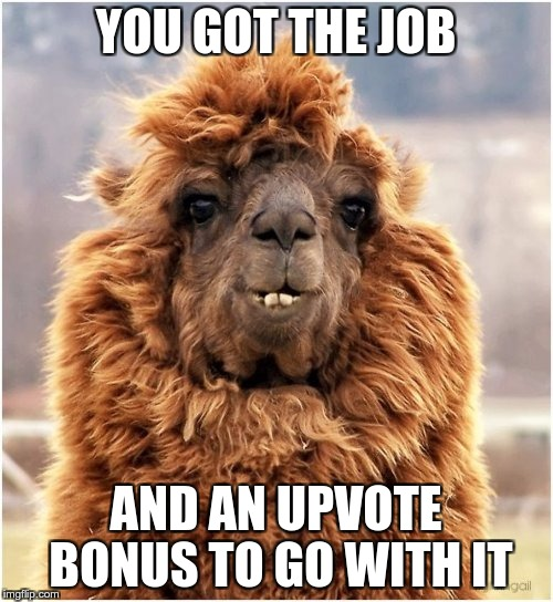 YOU GOT THE JOB AND AN UPVOTE BONUS TO GO WITH IT | made w/ Imgflip meme maker