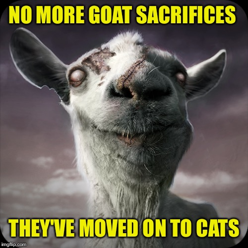 NO MORE GOAT SACRIFICES THEY'VE MOVED ON TO CATS | made w/ Imgflip meme maker