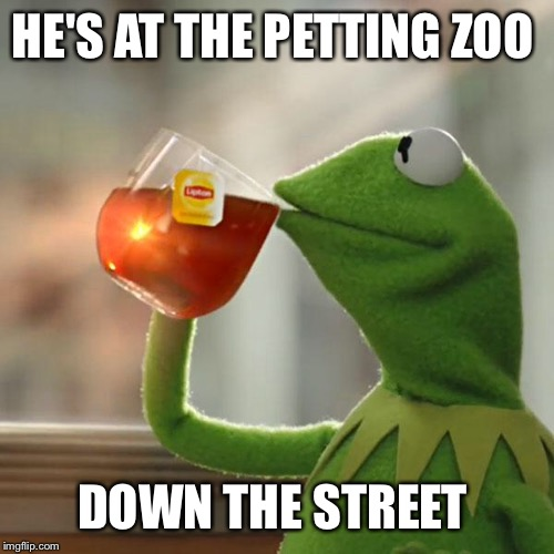 But Thats None Of My Business Meme | HE'S AT THE PETTING ZOO DOWN THE STREET | image tagged in memes,but thats none of my business,kermit the frog | made w/ Imgflip meme maker
