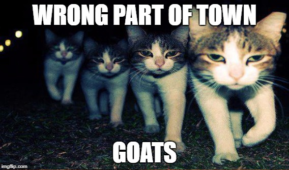 WRONG PART OF TOWN GOATS | made w/ Imgflip meme maker