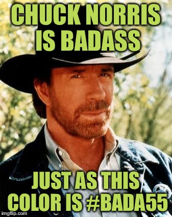 :0 | CHUCK NORRIS IS BADASS JUST AS THIS COLOR IS #BADA55 | image tagged in memes,chuck norris,badass,colors | made w/ Imgflip meme maker