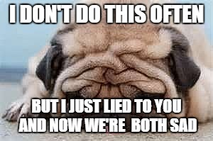 I DON'T DO THIS OFTEN BUT I JUST LIED TO YOU AND NOW WE'RE  BOTH SAD | image tagged in really depressed pug | made w/ Imgflip meme maker