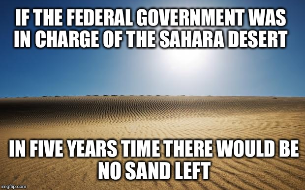 IF THE FEDERAL GOVERNMENT WAS IN CHARGE OF THE SAHARA DESERT IN FIVE YEARS TIME THERE WOULD BE NO SAND LEFT | made w/ Imgflip meme maker