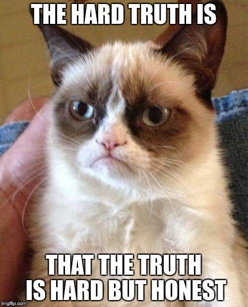 Grumpy Cat Meme | THE HARD TRUTH IS THAT THE TRUTH IS HARD BUT HONEST | image tagged in memes,grumpy cat | made w/ Imgflip meme maker