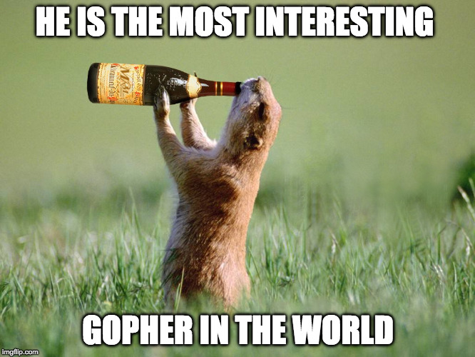 HE IS THE MOST INTERESTING GOPHER IN THE WORLD | image tagged in the most interesting man in the world,alcohol,memes,funny memes,dank memes | made w/ Imgflip meme maker