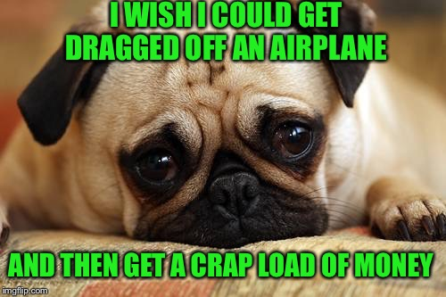 I WISH I COULD GET DRAGGED OFF AN AIRPLANE AND THEN GET A CRAP LOAD OF MONEY | made w/ Imgflip meme maker