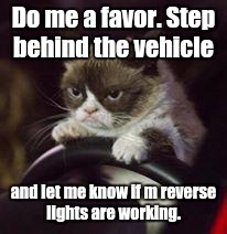 Do me a favor. Step behind the vehicle and let me know if m reverse lights are working. | made w/ Imgflip meme maker