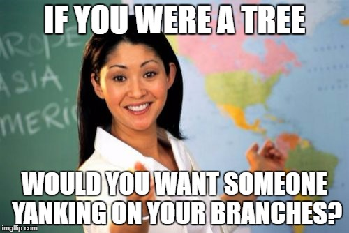 How to get 5th graders to snicker like Beavis & Butthead... | IF YOU WERE A TREE WOULD YOU WANT SOMEONE YANKING ON YOUR BRANCHES? | image tagged in memes,unhelpful high school teacher | made w/ Imgflip meme maker