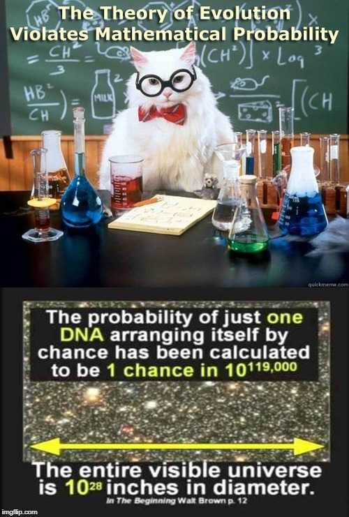 image tagged in evolution,cat,mathematical probablity,biogenesis,abiogenesis,walt brown | made w/ Imgflip meme maker