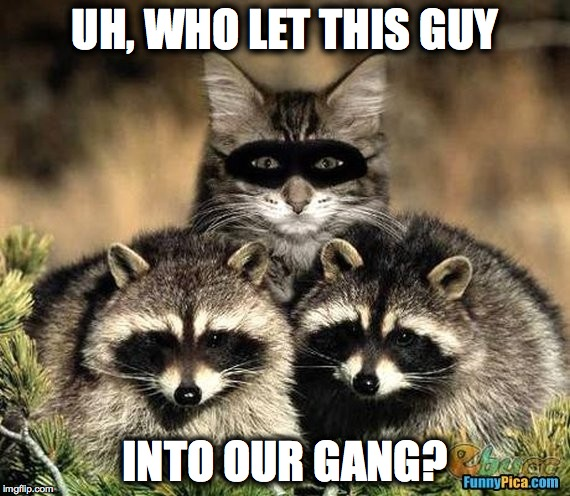 New Gang Member | UH, WHO LET THIS GUY INTO OUR GANG? | image tagged in just might fit in | made w/ Imgflip meme maker