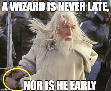 A WIZARD IS NEVER LATE, NOR IS HE EARLY | image tagged in lotr | made w/ Imgflip meme maker