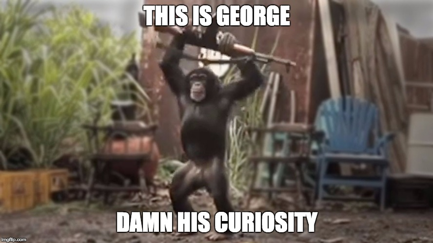 Monkey With AK-47 | THIS IS GEORGE DAMN HIS CURIOSITY | image tagged in monkey with ak-47 | made w/ Imgflip meme maker