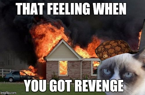 Burn Kitty Meme | THAT FEELING WHEN YOU GOT REVENGE | image tagged in memes,burn kitty,grumpy cat,scumbag | made w/ Imgflip meme maker
