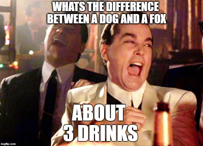 Talking shit with the boys | WHATS THE DIFFERENCE BETWEEN A DOG AND A FOX ABOUT 3 DRINKS | image tagged in memes,good fellas hilarious | made w/ Imgflip meme maker
