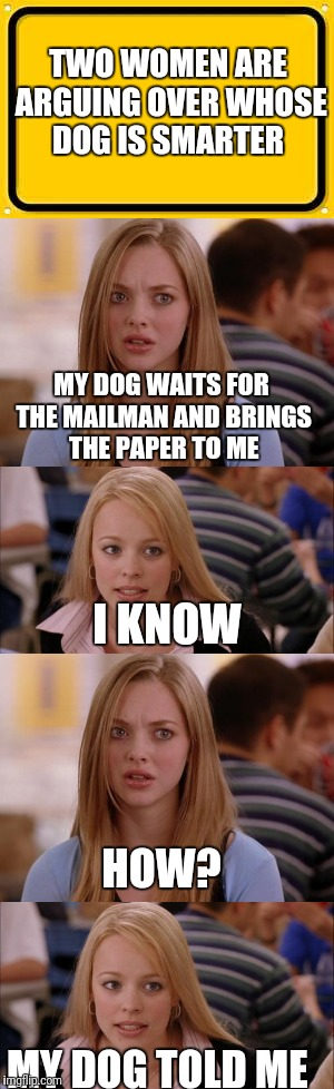 Two women argue over whose dog is smarter | TWO WOMEN ARE ARGUING OVER WHOSE DOG IS SMARTER MY DOG TOLD ME MY DOG WAITS FOR THE MAILMAN AND BRINGS THE PAPER TO ME I KNOW HOW? | image tagged in dogs,memes | made w/ Imgflip meme maker