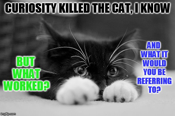 CURIOSITY KILLED THE CAT, I KNOW BUT WHAT WORKED? AND WHAT IT WOULD YOU BE REFERRING TO? | made w/ Imgflip meme maker