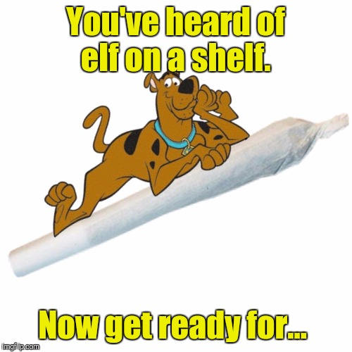 So that's what those meddling kids do on their down time.  |  You've heard of elf on a shelf. Now get ready for... | image tagged in funny,elf on the shelf,scooby doo,weed | made w/ Imgflip meme maker