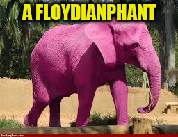 A FLOYDIANPHANT | made w/ Imgflip meme maker