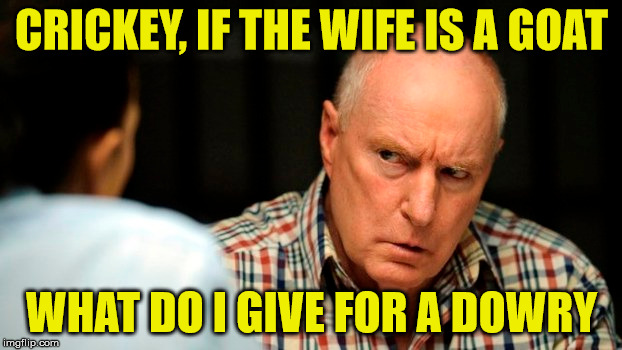 CRICKEY, IF THE WIFE IS A GOAT WHAT DO I GIVE FOR A DOWRY | made w/ Imgflip meme maker