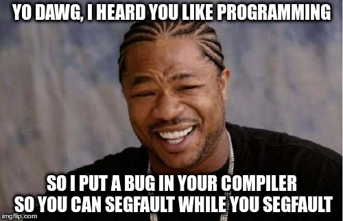 Yo Dawg Heard You Meme | YO DAWG, I HEARD YOU LIKE PROGRAMMING SO I PUT A BUG IN YOUR COMPILER SO YOU CAN SEGFAULT WHILE YOU SEGFAULT | image tagged in memes,yo dawg heard you | made w/ Imgflip meme maker