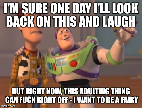 X, X Everywhere Meme | I'M SURE ONE DAY I'LL LOOK BACK ON THIS AND LAUGH BUT RIGHT NOW, THIS ADULTING THING CAN F**K RIGHT OFF - I WANT TO BE A FAIRY | image tagged in memes,x,x everywhere,x x everywhere | made w/ Imgflip meme maker