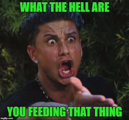 WHAT THE HELL ARE YOU FEEDING THAT THING | made w/ Imgflip meme maker
