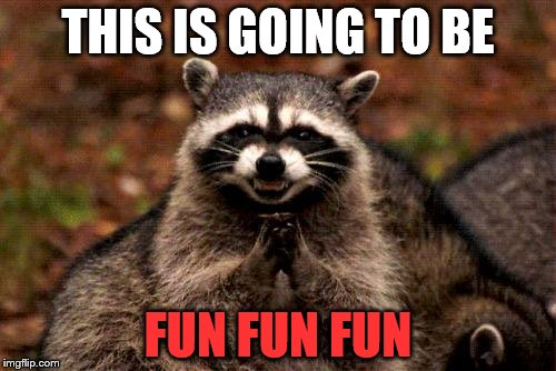 Evil Plotting Raccoon Meme | THIS IS GOING TO BE FUN FUN FUN | image tagged in memes,evil plotting raccoon | made w/ Imgflip meme maker